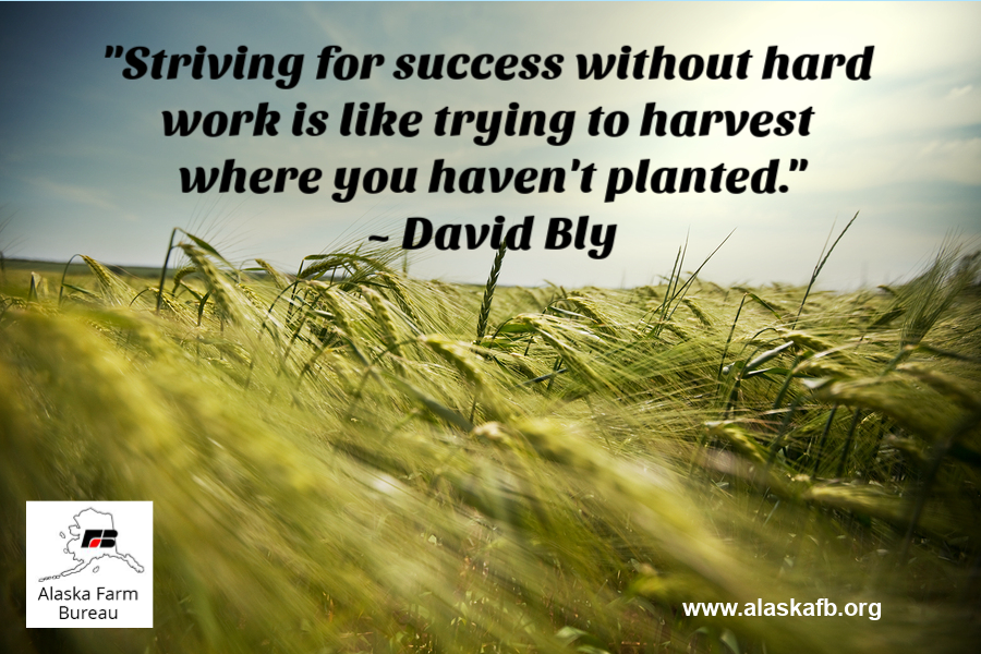 Striving For Success Without Hard Work Is Like Trying To Harvest Where You Haven T Planted David Bly Feelgoodfri Strive For Success Feel Good Friday Farm