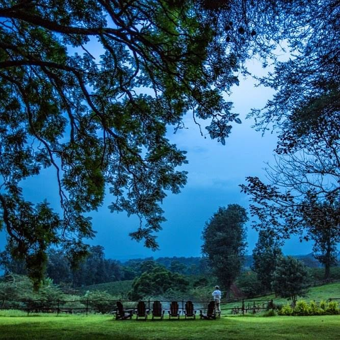 A truly magical evening on the lawns of The Manor at Ngorongoro (Image credit: Silverless)