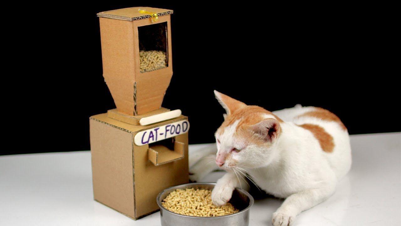 Diy Tom Cat Food Dispenser From Cardboard At Home Mr H2