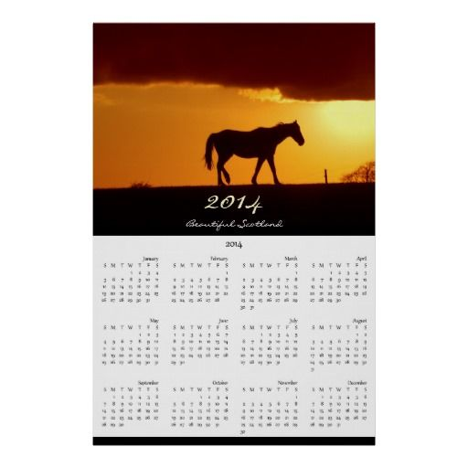 A horse and the sunset personalised calendar 2014