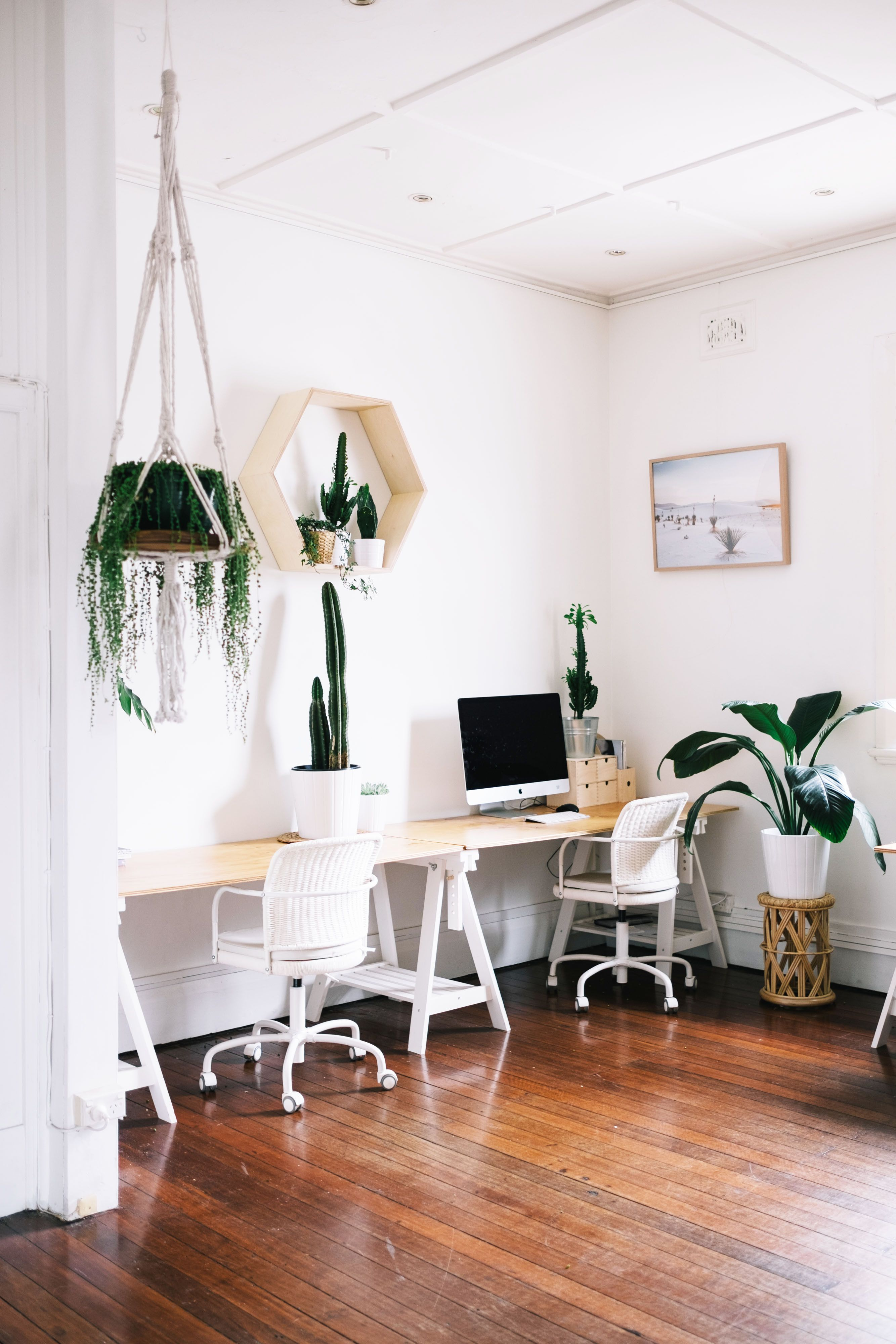 This Creative Agency\u0027s Plant-Filled Woollahra Studio Is Our Dream Workspace via @MyDomaineAU & This Creative Agency\u0027s Plant-Filled Woollahra Studio Is Our Dream ...
