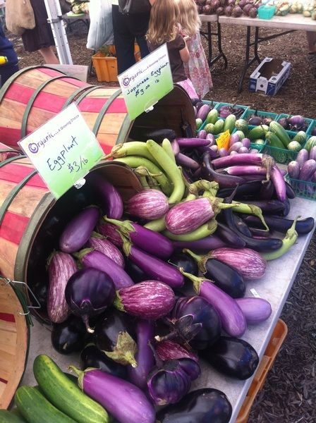 Eggplants - from Rick Bayless