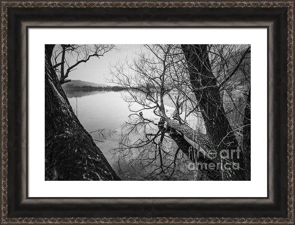 The Fallen Framed Print By Yuri Santin