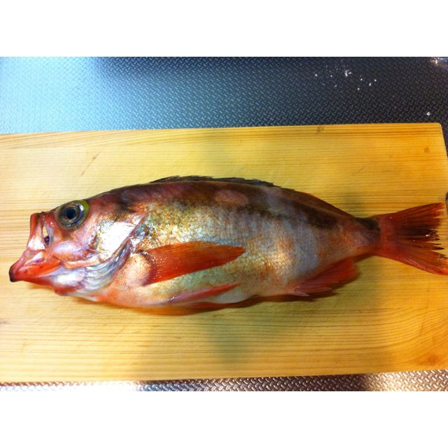 May 24th dinner. Black rockfish is called MABARU in japan. This is seasonal fish. It is too big to simmere by ordinary pan.
