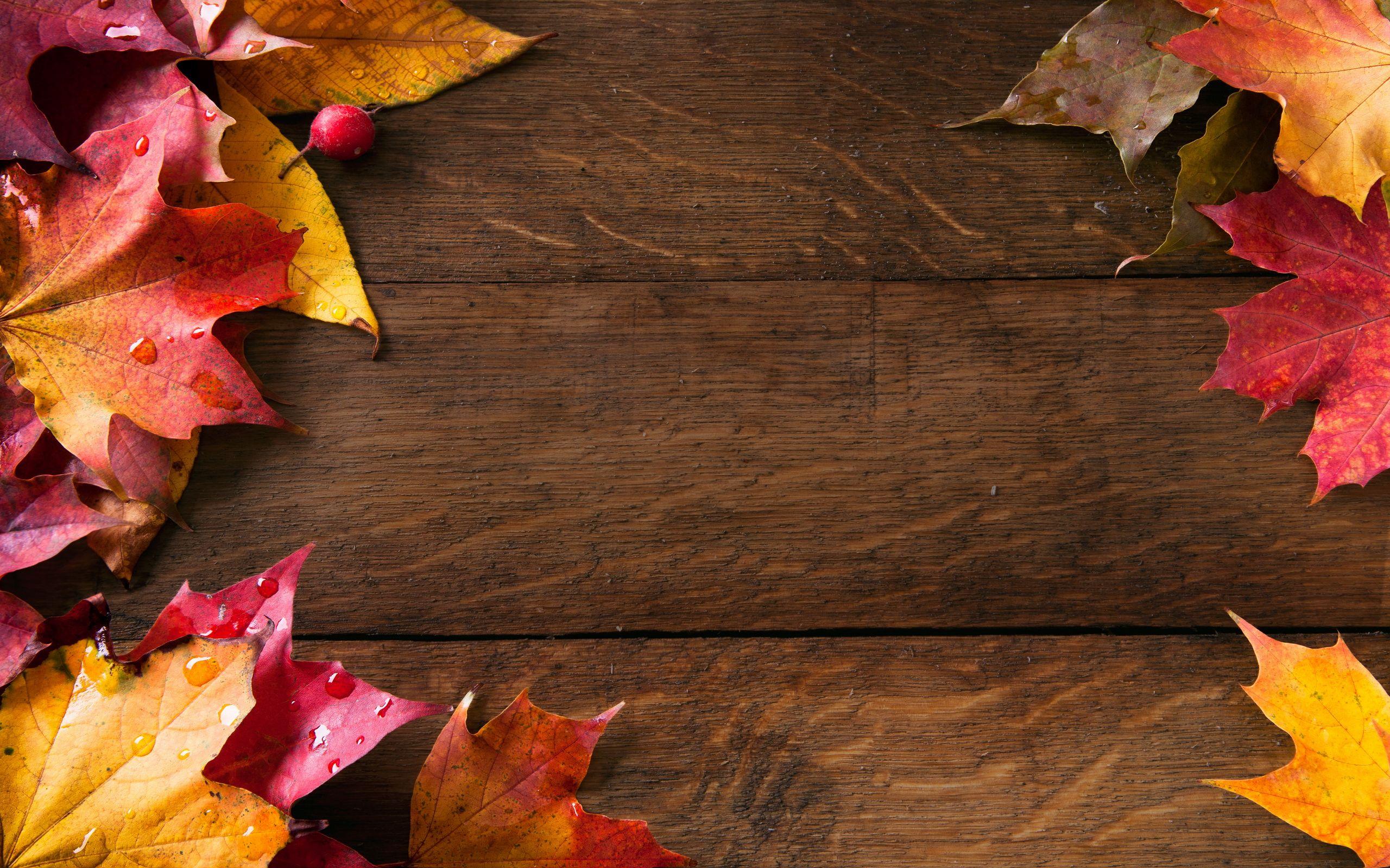 Autumn Wallpaper Wonderful C53 Wallpaperel Autumn Wallpaper Hd Desktop Wallpaper Fall Fall Wallpaper
