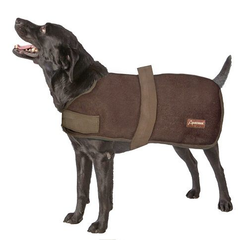 Telecharger Best Winter Coats Dog Coats Velcro Straps
