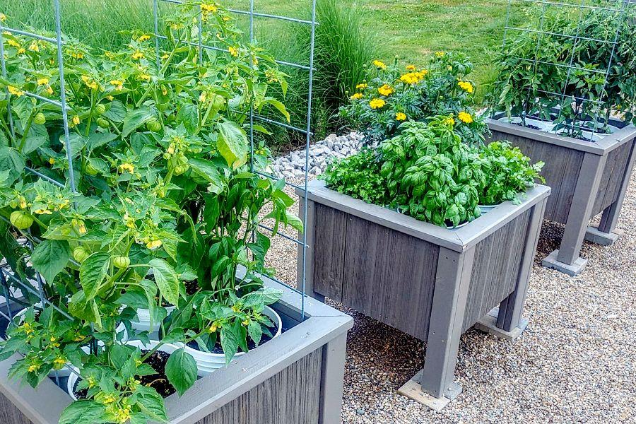 The DIY 5 Gallon Bucket Planter Box - The Best Garden ...