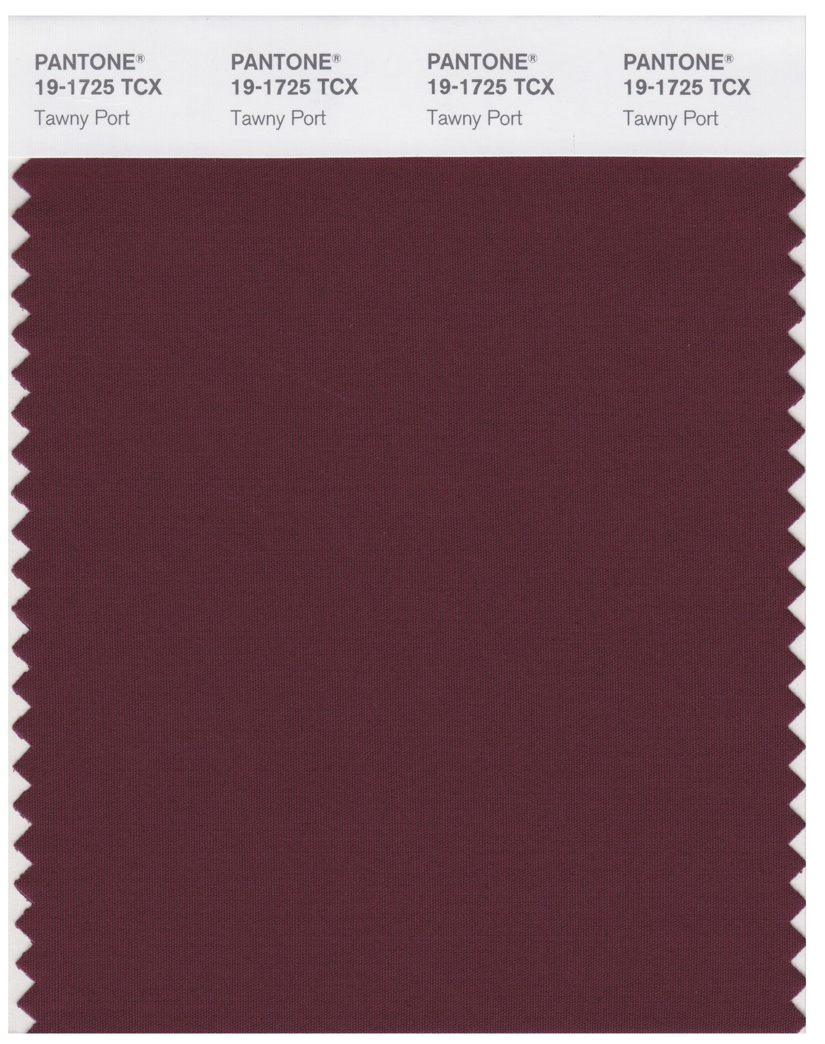Pantone Smart 19 1725 Tcx Color Swatch Card - Tawny Port