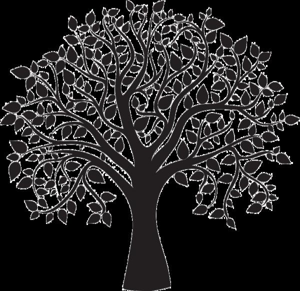 картинка узорами дерева речь, сути