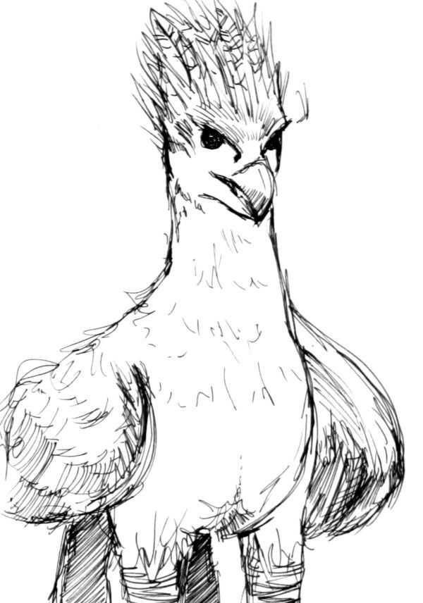 coloring pages buckbeak - photo#11