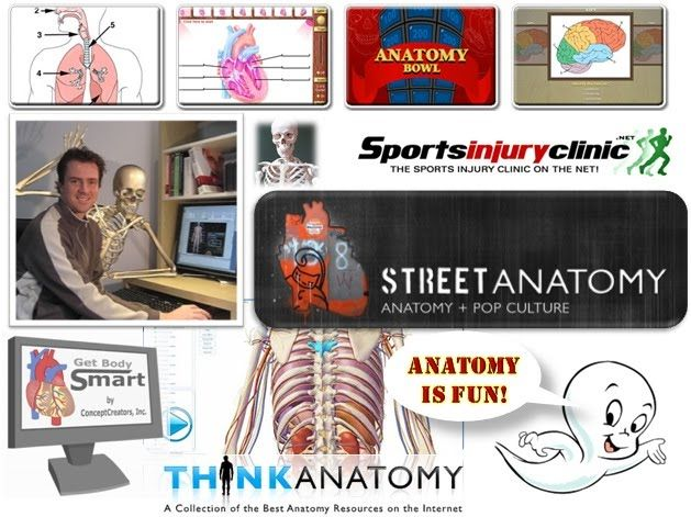 ZaidLearn: A Sizzling Collection of Anatomy Games & Resources ...