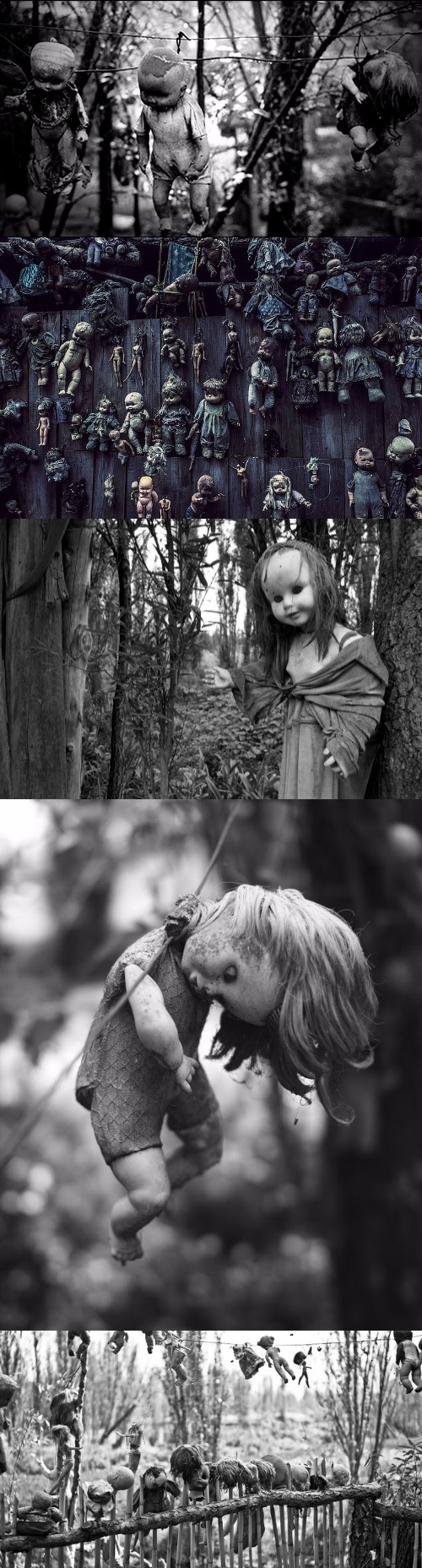 scary dolls babies halloween haunted house ideas island of the dolls one - Halloween Haunted Places