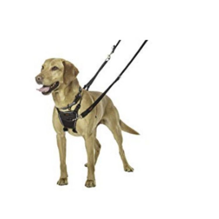 Halti Dog Harness No Pull Harness For Dogs Stop Dog Pulling On
