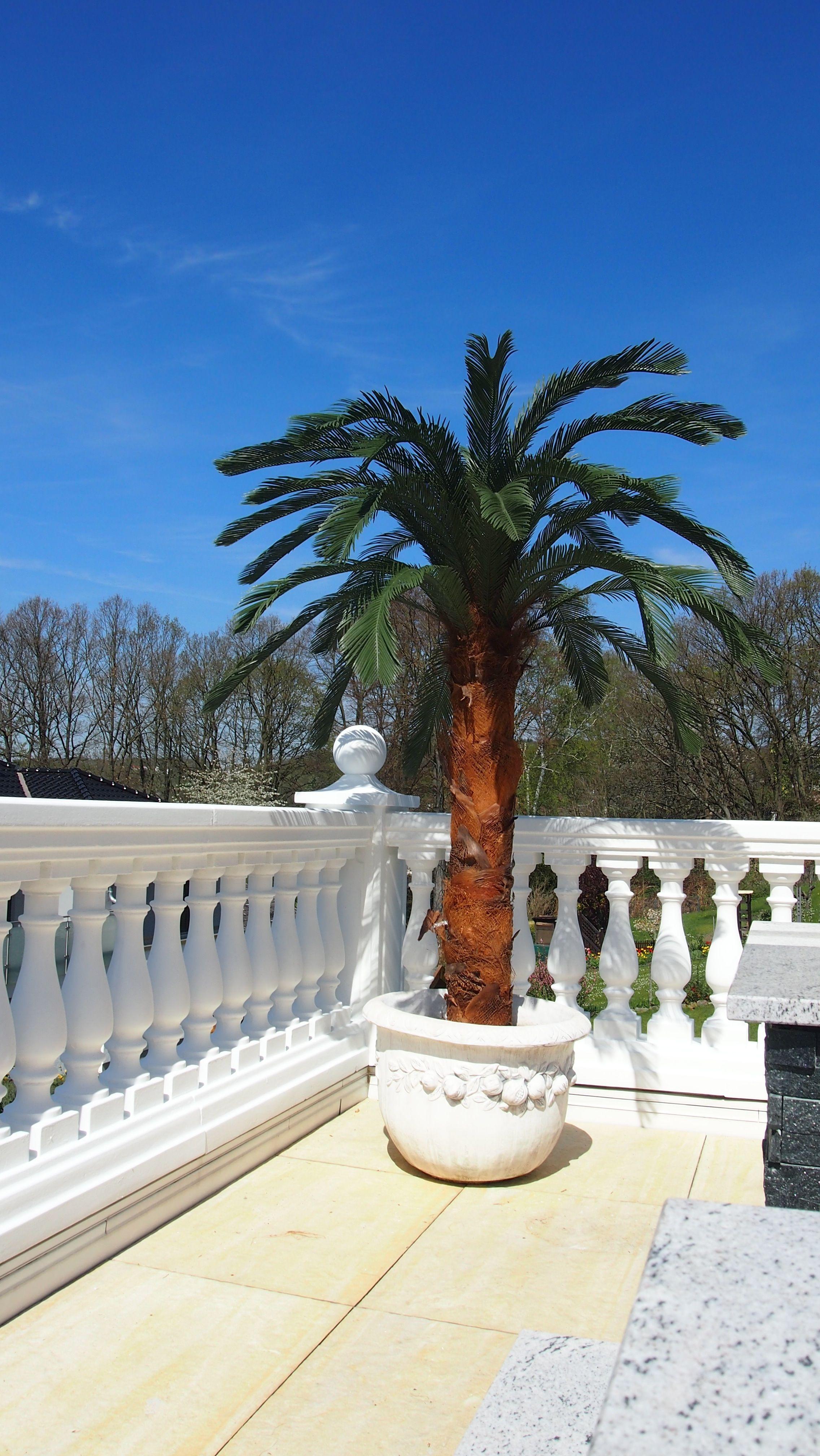 Große Künstliche Palme Von Bella Planta Wetterfeste Kunstpalme