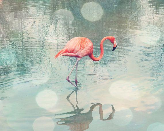 flamingo print coral wall art bathroom wall decor bird photography flamingo art teal bedroom - Pink Flamingo Bath Decor