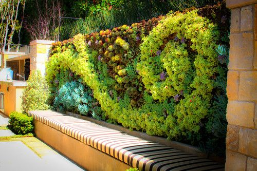Decoration How To Build A Living Wall With The Natural