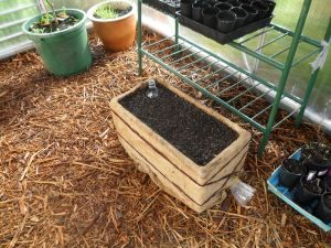 How to make a self watering wicking box: Produce to the People Tasmania