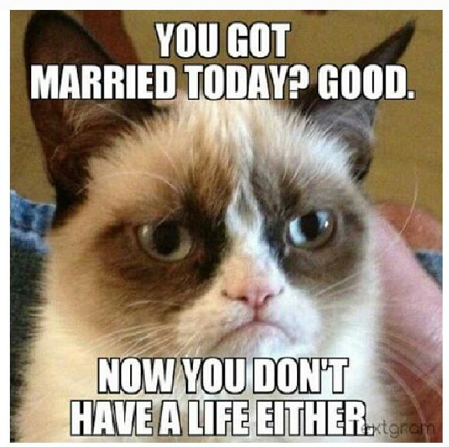 You got married today? Now you don\u0027t have a life either