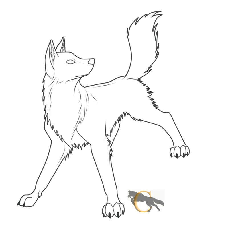 Free Wolf Lineart By Flareandicicle On Deviantart Anime Wolf Drawing Wolf Drawing Anime Wolf
