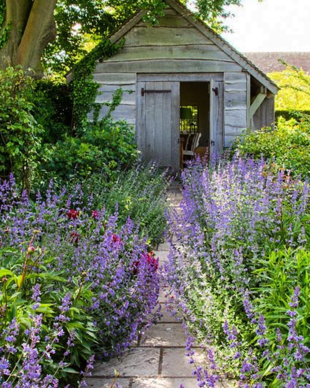 Small Cottage Garden Ideas