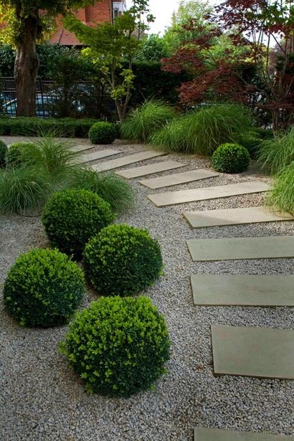 Love The Shrubs And The Path Contemporary Landscape By Laara