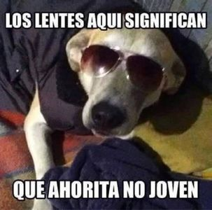 Ask Fm Ask And Answer Humor Funny Memes Mexican Humor
