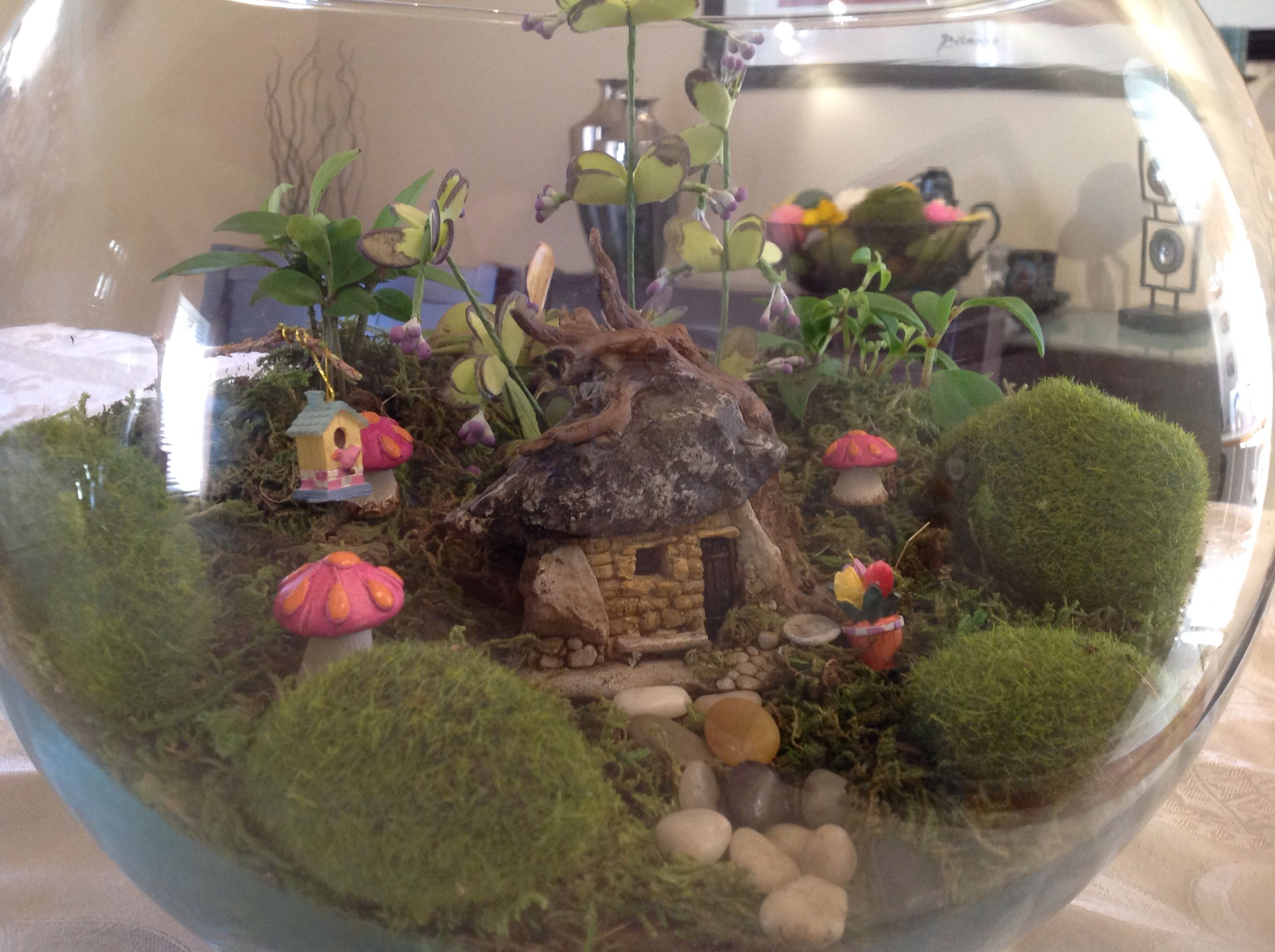 Goldfish bowl goldfish and fairies on pinterest
