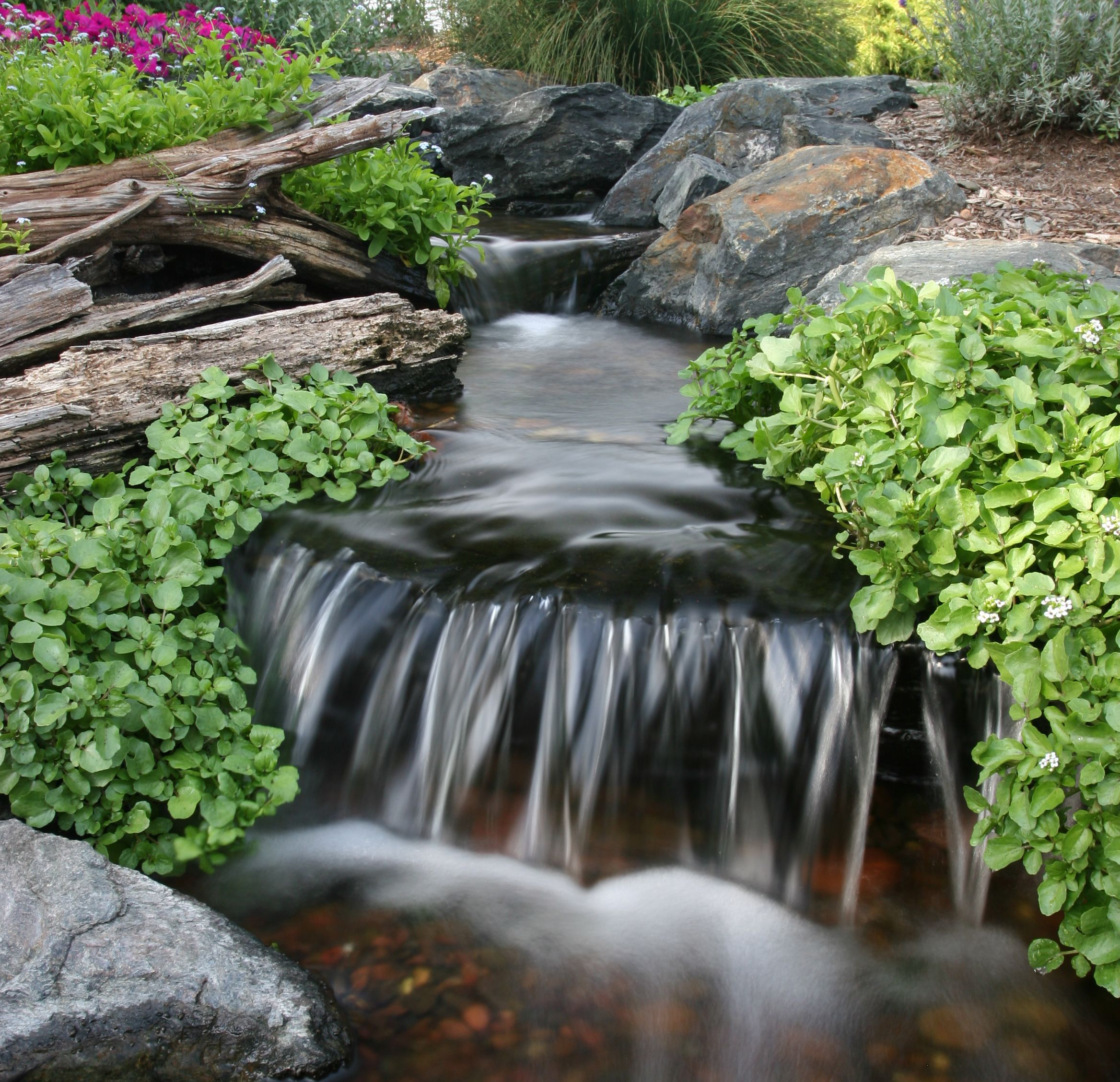 7 tips to keep pond water clean water cleaner water and backyard