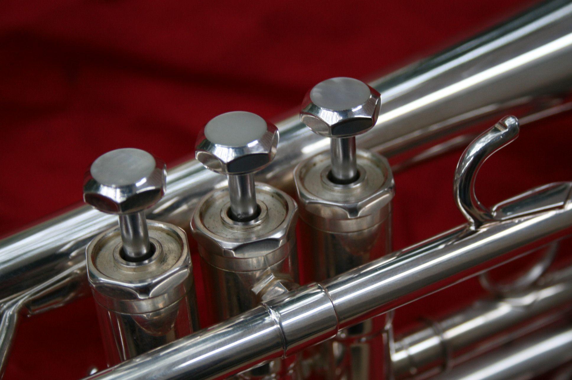 10PCS Silver Metal Trumpet Piston Stem Valve Piston Stems Musical Parts