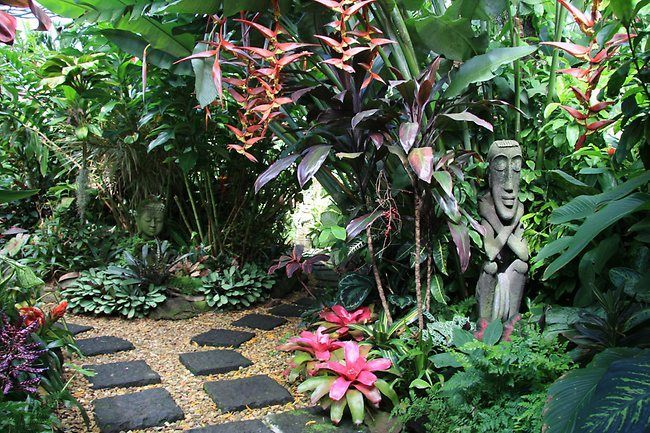 Dennis Hundscheidt's tropical garden | Best tropical ...