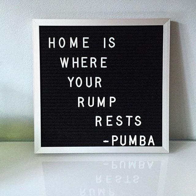 disney quotes new home quotes disney quotes funny quotes