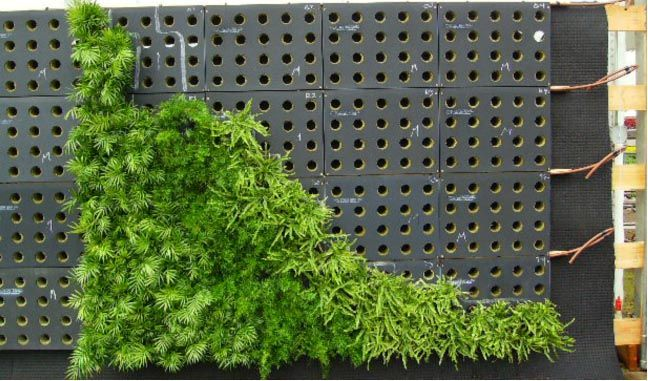 High Quality Sage Vertical Garden System   BioTiles™ With Rock Wool Growing Substrate