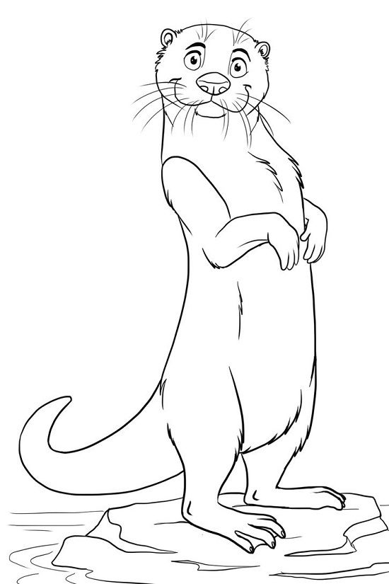 10 Best Otter Coloring Pages For Toddlers Animal Coloring Pages