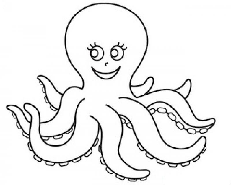 Octopus Coloring Pages Preschool And Kindergarten Octopus Coloring Page Kindergarten Coloring Pages Coloring Pages
