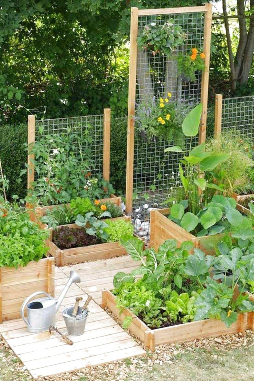 56 Very Beautiful Backyard Vegetable Garden Designs Ideas Small Vegetable Gardens Backyard Vegetable Gardens Small Garden Design