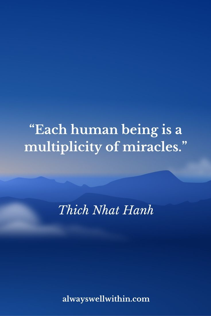 21 Thich Nhat Hanh Quotes That Will Inspire Peace, Love, and Joy — Always Well Within