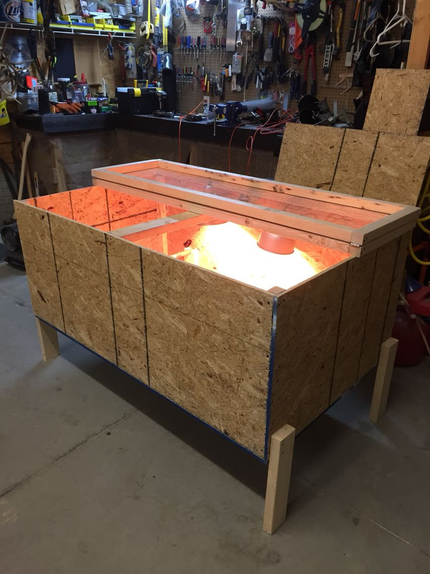 Dimensions for homemade chicken brooder 5'x3'
