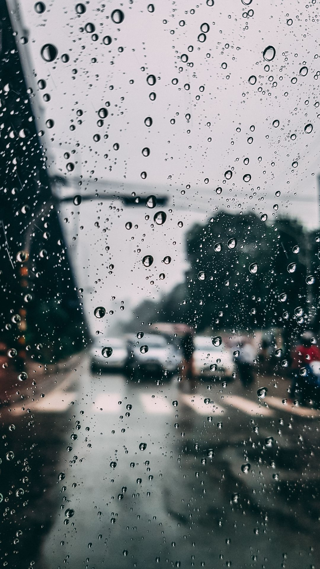 Wallpapers Drizzle Precipitation Tree Drop Window Rain Wallpapers Colorful Wallpaper Android Wallpaper