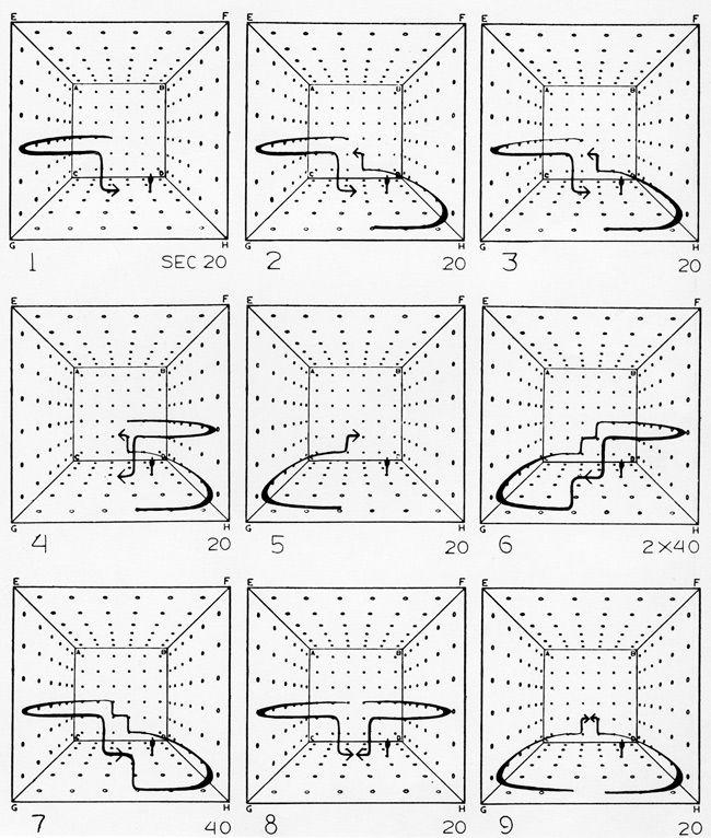 diagram of cube space