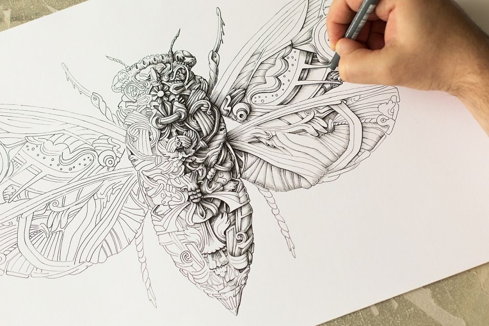 Cicada_WIP