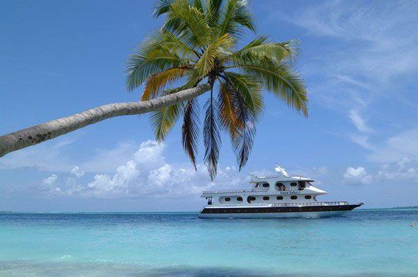 Max Surfaris - Maldivas Surfari a bordo de ISLAND SAFARI DE LUXE