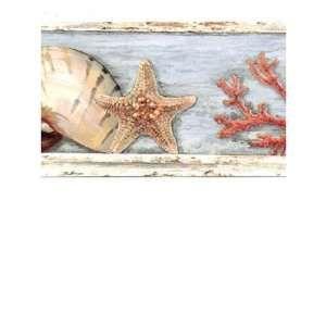 Seashell Border Starfish Wallpaper Pictures