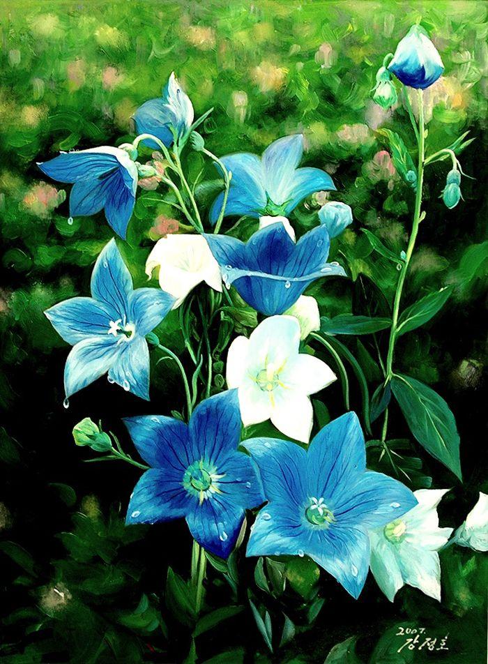 Kang Jung Ho (с изображениями) | Цветы, Красивые цветы ...