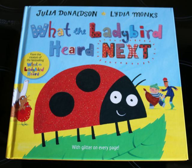 What the Ladybird Heard Next - Over 40 and a Mum to OneOver 40 and a Mum to One