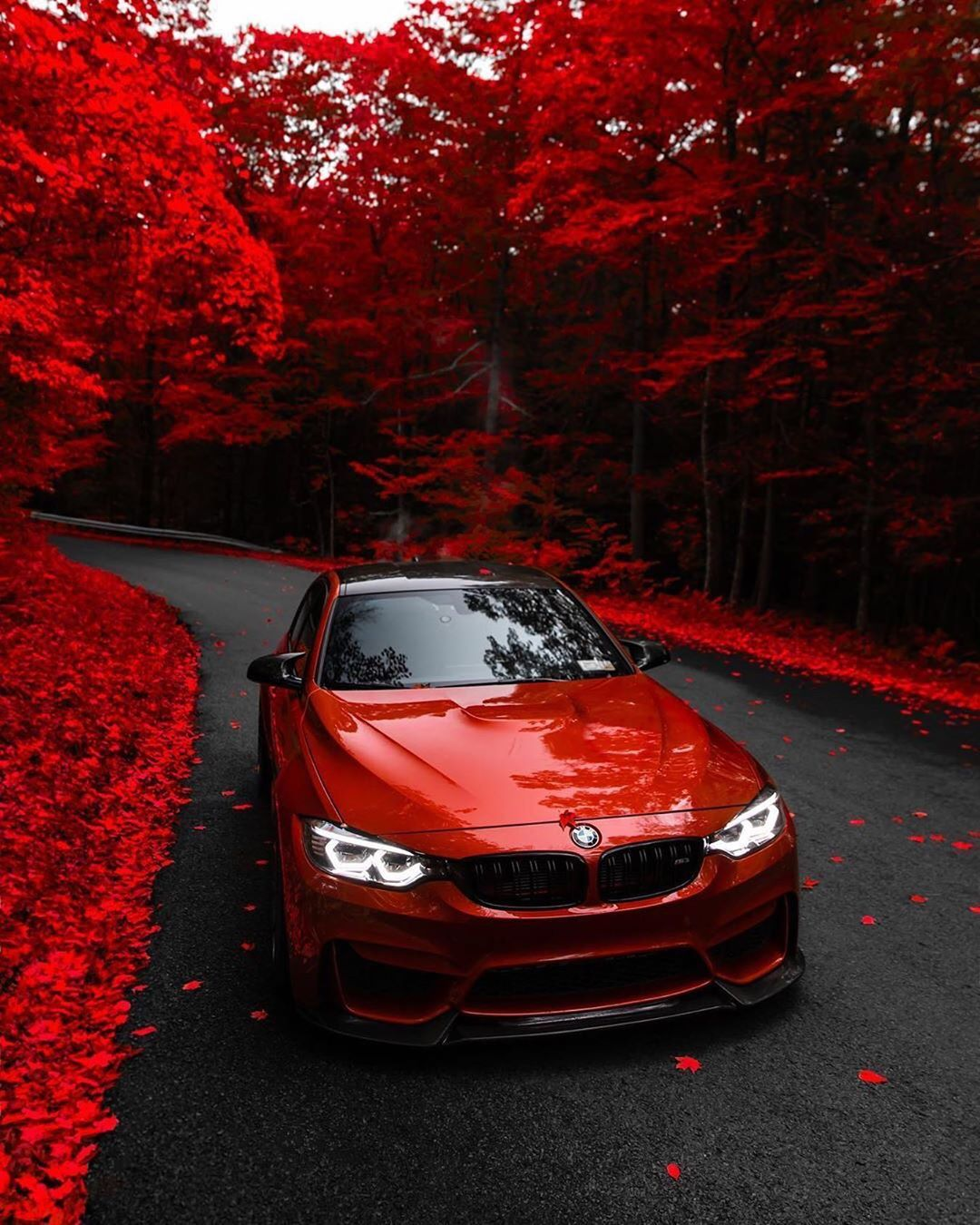 35 mentions J'aime, 16 commentaires BMW MPOWER