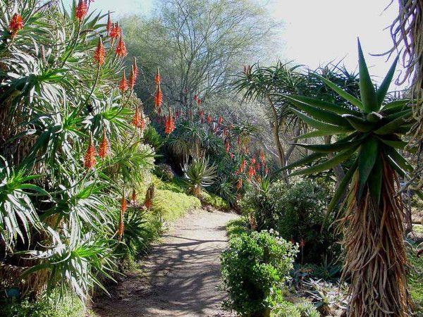 UCR Botanic Gardens, Riverside | Thinking Of Selling Or Buying In San  Bernardino Or Riverside