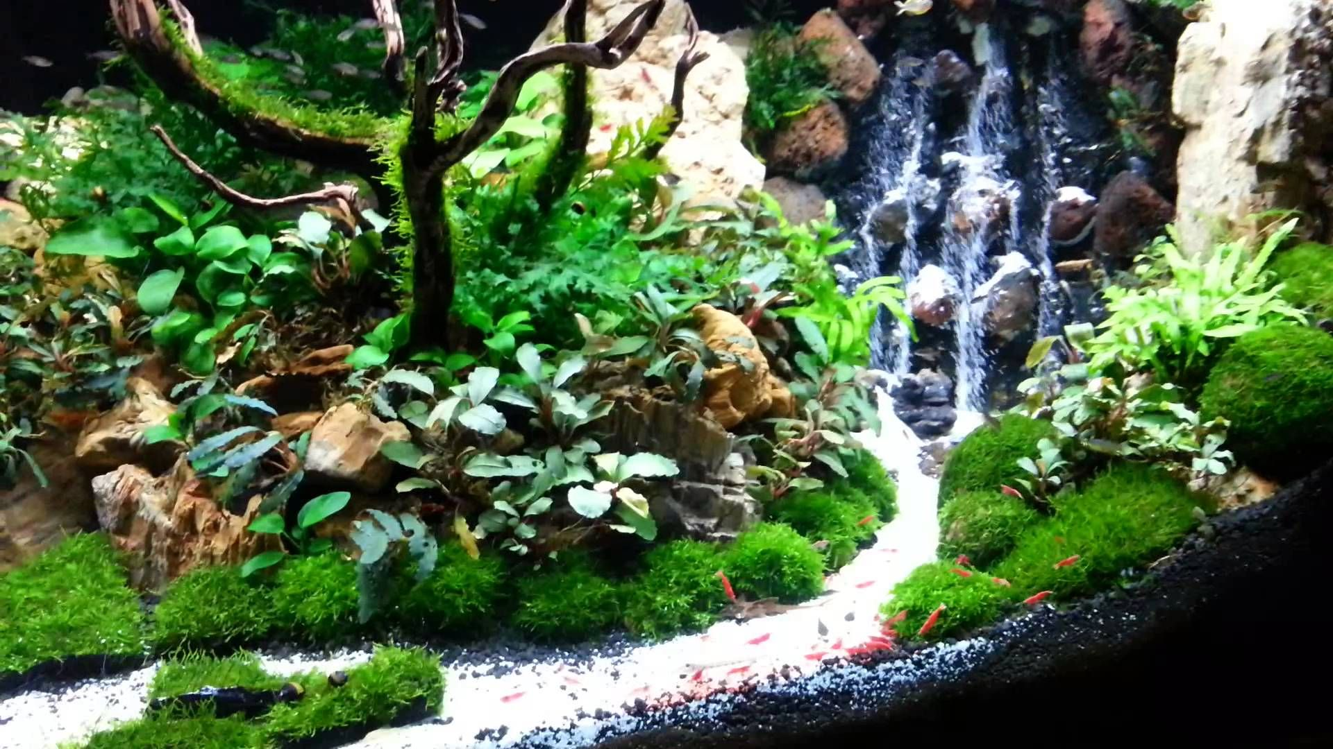 Sand Waterfall Floating Rocks For Aquascaping Cute766
