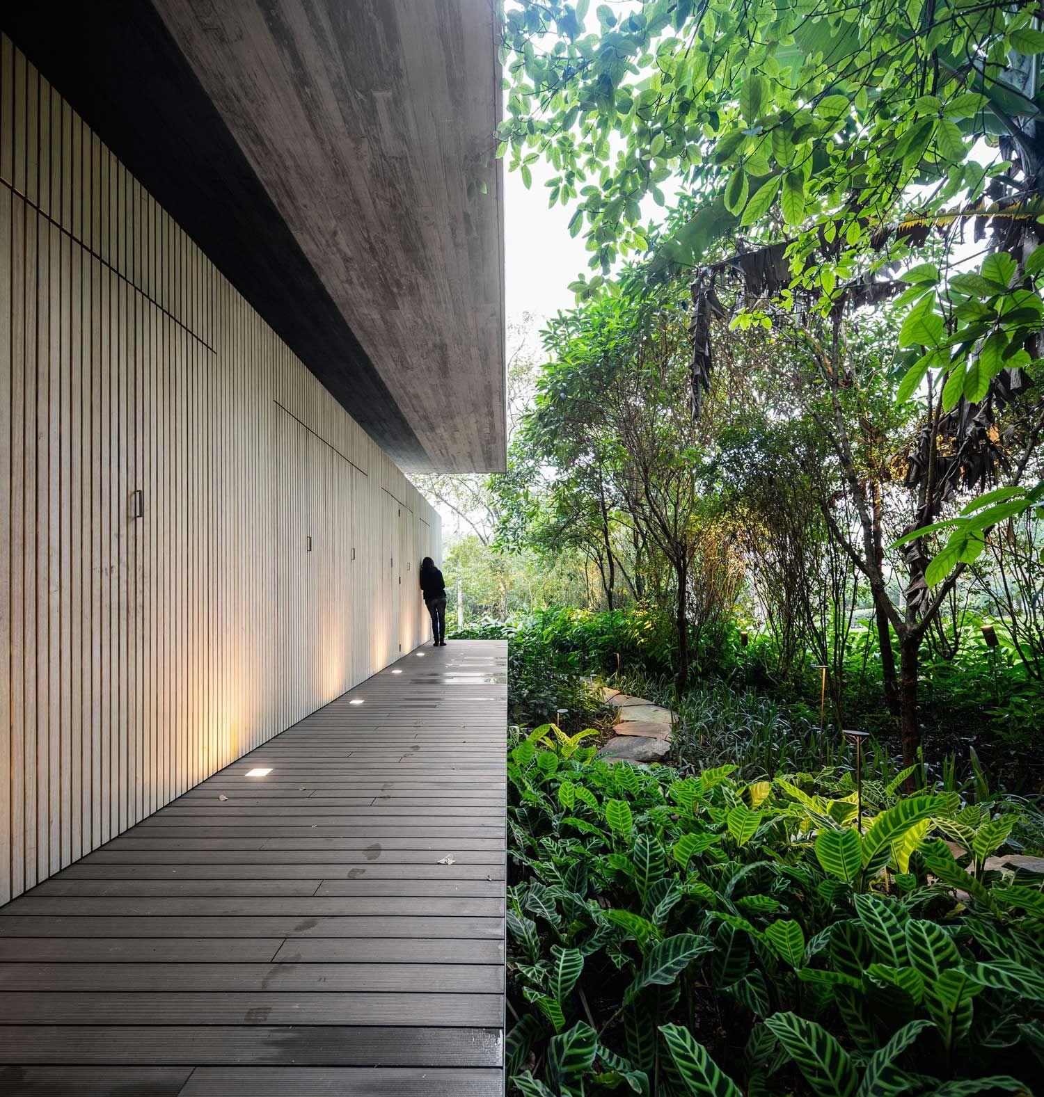 Jungle House (Casa na Mata) , Brazil by Studio mk27