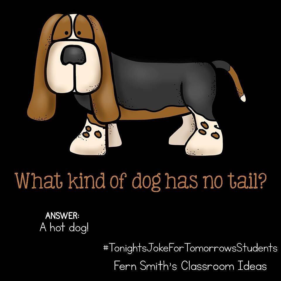 "Fern Smith's Classroom Ideas on Instagram: ""Tonight's Joke for Tomorrow's Students What kind of dog has no tail? A hot dog! Follow me on Pinterest where I have an entire board…"""