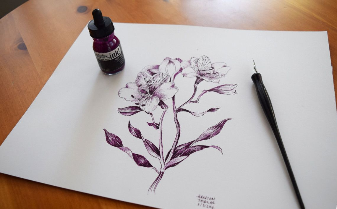 Alstroemeria Flower Ink Ink Drawing Flower Art Tattoos Lace Drawing Floral Drawing